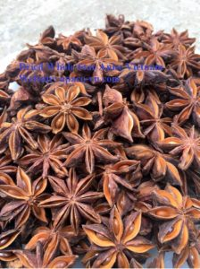 Dried whole star anise Vietnam(apaco-vn.com)