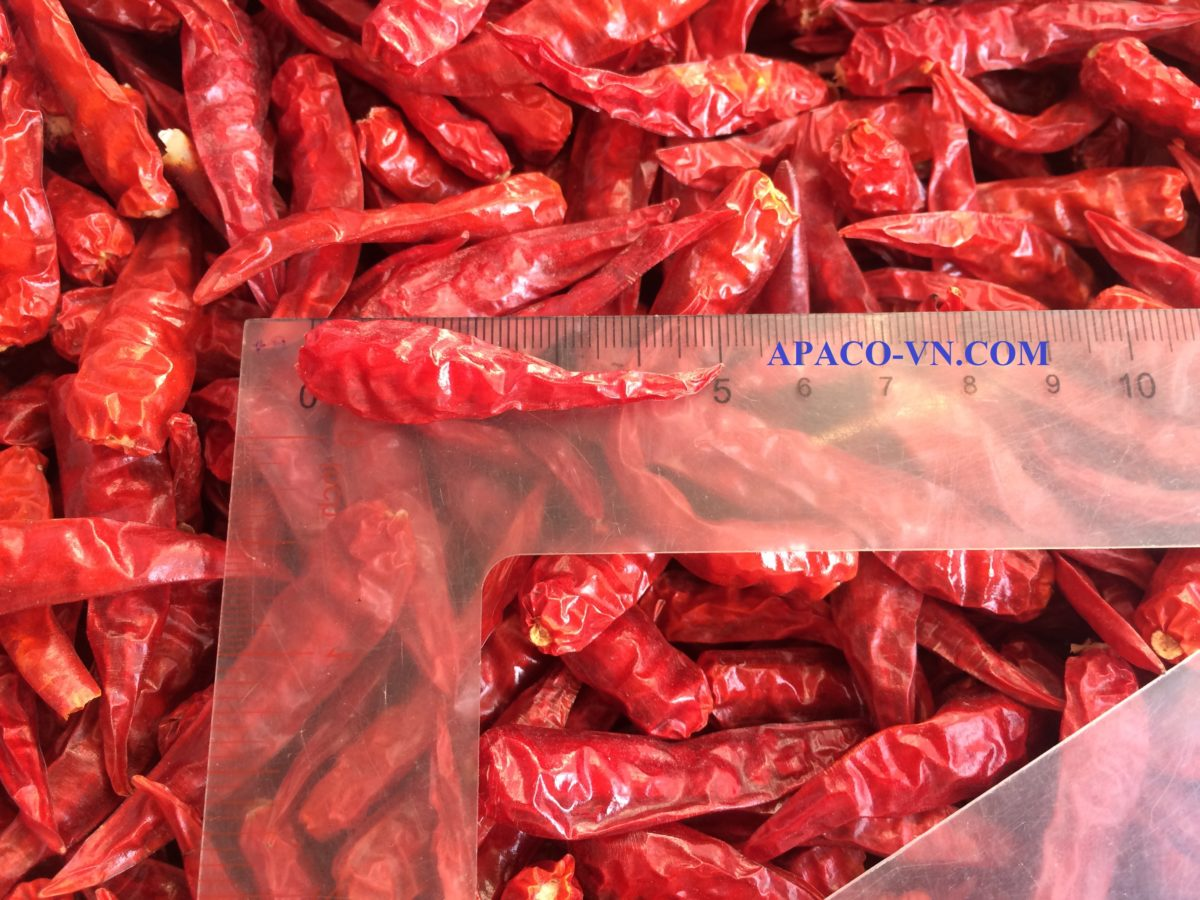 Vietnam Dried red chili