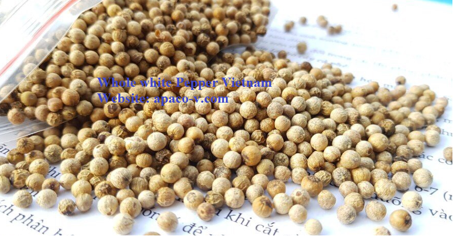 Whole White pepper Vietnam(apaco-vn.com)