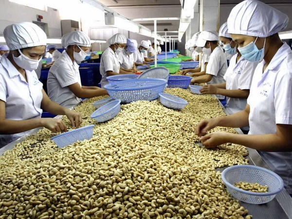 The attraction of the Vietnamese food processing industry